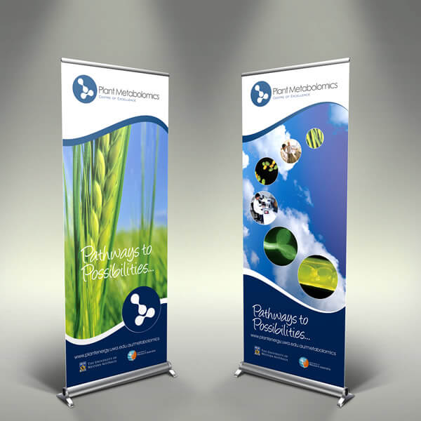 Display & Banner Design